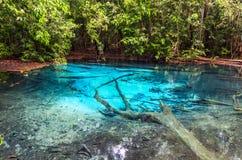 Emerald Blue Pool Stock Photo