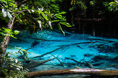Emerald blue pool at Krabi Thailand Royalty Free Stock Photography