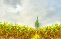 Emerald city from cornfield. Yellow brick road leading to emerald city through cornfield Stock Image