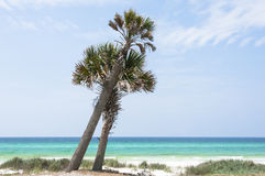 The Emerald Coast and Beach Royalty Free Stock Photography