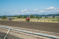 Emerald Downs, corsa è in corso con il tubo flessibile di numero uno nel cavo Fotografie Stock Libere da Diritti