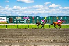 Emerald Downs, raça é corrente com a mangueira do número um na ligação Imagem de Stock