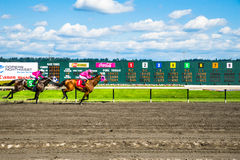 Emerald Downs, race is underway with number one hose in the lead Stock Image