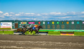 Emerald Downs, race is underway with number three hose in the lead Royalty Free Stock Images