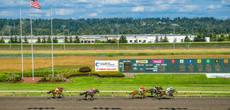 Emerald Downs, race is underway with number two hose in the lead Stock Photography