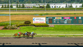 Emerald Downs, race is underway with number two hose in the lead Stock Photo