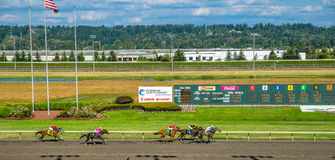 Emerald Downs, race is underway with number two hose in the lead Royalty Free Stock Image