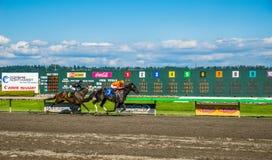 Emerald Downs, Rennen ist mit Schlauch der Nr. drei in der Führung laufend Lizenzfreie Stockbilder