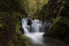 Emerald Falls Arkivbild