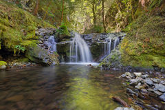 Emerald Falls längs Gorton liten vik i Oregon Arkivbilder