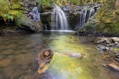 Emerald Falls le long de crique de Gorton avec le bois de flottage en Orégon Image libre de droits