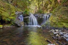 Emerald Falls lungo l'insenatura di Gorton nell'Oregon Immagini Stock