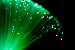 Emerald fibre optic burst. Royalty Free Stock Image