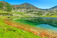 Emerald glacier lake,Retezat mountains,Transylvania,Romania Royalty Free Stock Photography
