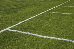 Emerald grass of a playing field Stock Images