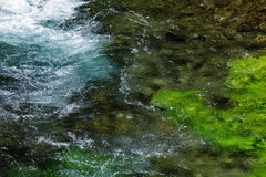 Emerald green flowing river water with seewead, abstract backgro Royalty Free Stock Images