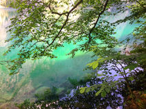 Emerald Green Mountain Lake dans les Alpes Photos libres de droits