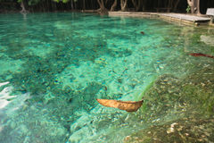 Emerald green pool in Thailand. Emerald green pool clean, clear and cold in Thailand Royalty Free Stock Photo