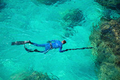 Emerald green sea water diver spearfishing Stock Photography