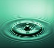 Emerald Jewel fotografia de stock royalty free