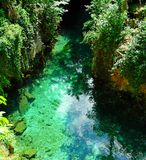 Emerald jungle,. Crystal clear river flowing through a tropical jungle royalty free stock photography