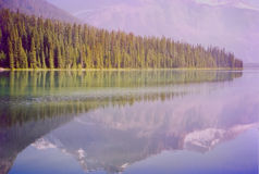 Emerald Lake. Yoho Park royalty free stock image