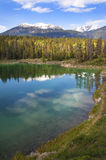 Emerald lake. Banff Alberta,Canada Royalty Free Stock Photo