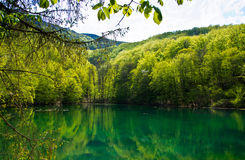 Emerald lake. Beautiful emerald mountain lake in Beech Mountains, Szilvasvarad, Hungary royalty free stock image