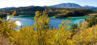 Emerald Lake at Carcross, Yukon Territory, Canada Stock Images