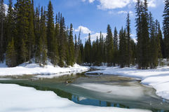 Emerald Lake frozen over Royalty Free Stock Images