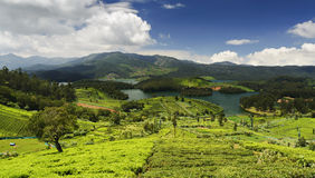 Emerald Lake Nilgiris Ooty Royaltyfria Bilder