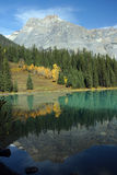 Emerald_lake_reflections Photos stock