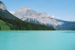 Emerald Lake's beautiful waters Royalty Free Stock Images