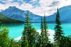 Emerald lake. Serenity Emerald Lake in the Yoho National Park, Canada. Instagram filter royalty free stock photography