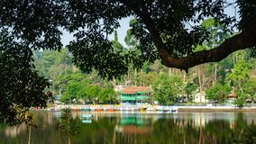 Emerald Lake surrounded by trees, Yercaud. An inviting view of emerald Lake surrounded by lush green trees on a pleasant sunny morning, Yercaud. Boats are Royalty Free Stock Images