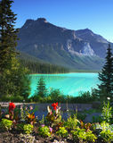 Emerald lake, Yoho National park, Canada Royalty Free Stock Photo