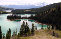 Emerald Lake, Yukon Canada. A view of famous Emerald Lake in the Yukon, Canada with snow-capped mountains in the background. Emerlad Lake is a popular