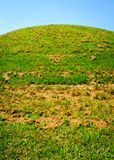 Emerald Mound Stock Photo