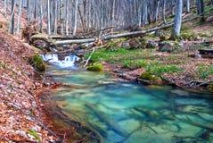 Emerald mountain river Stock Image