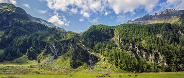 The Emerald Path. In The High Tauern National Park, Austria royalty free stock photos