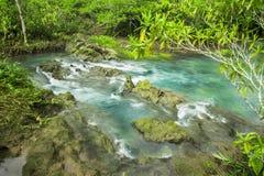 Emerald Pool är den osedda pölen i mangroveskog på Krabi i Thailand, vattenflöde, långa exponeringstekniker Arkivbild