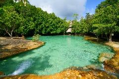 Emerald Pool Fotografia de Stock