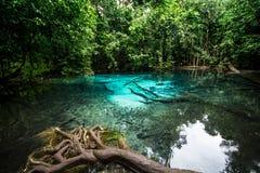 Emerald Pool Stockbild