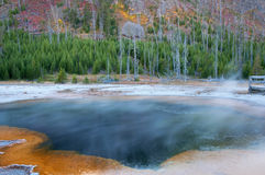 Emerald Pool Royalty Free Stock Photography