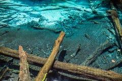 Emerald Pool & Blue Pool Stock Photo