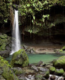 Emerald Pool, Dominica. Natural waterfall and pool known as the Emerald Pool in the rain forest of the Caribbean island of Dominica Royalty Free Stock Image