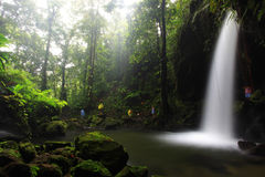 Emerald Pool, Dominica. Emerald pool waterfall in Dominica stock images