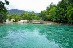 Emerald Pool en selva tropical tropical imagenes de archivo