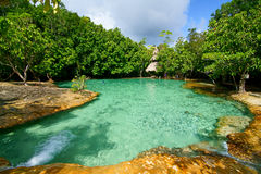 Emerald pool. This is Emerald Pool. This hot spring originates from a warm stream in the lowland forest of Khao Nor Juji which is supposedly Thailand's last stock photography