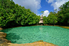 Emerald pool 2. This is Emerald Pool. This hot spring originates from a warm stream in the lowland forest of Khao Nor Juji which is supposedly Thailand's last stock images